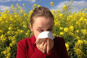 Fall Allergy Season