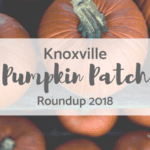 Corn Mazes, Pumpkin Patches, Trick-or-Treating, Oh my! {2018}