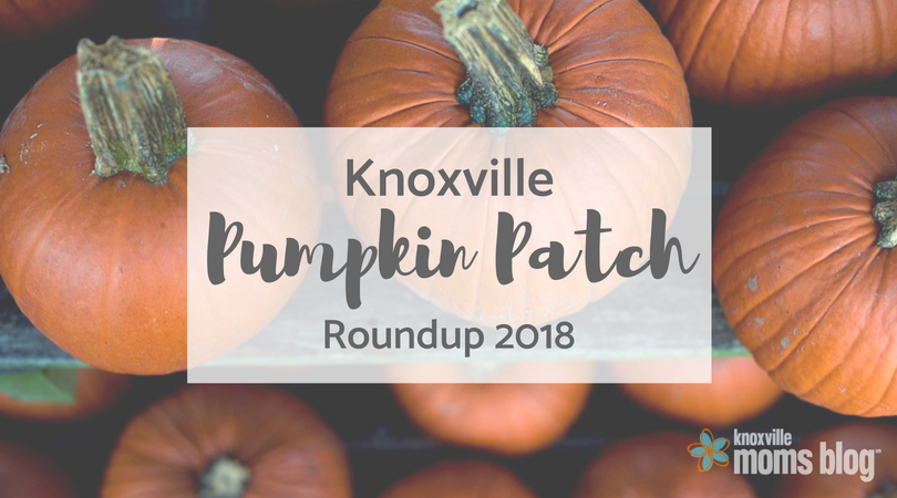 Knoxville Corn Mazes Pumpkin Patches Trick Or Treating Oh My
