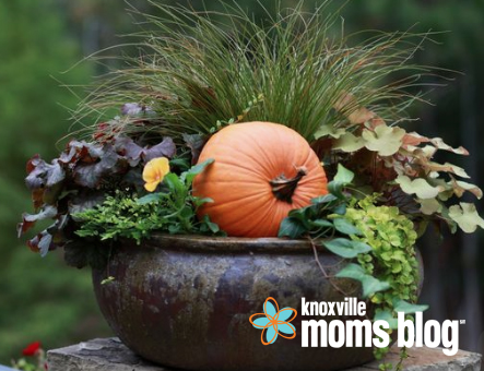 A Beautiful Entrance: Creative Container Gardens for Fall and Winter
