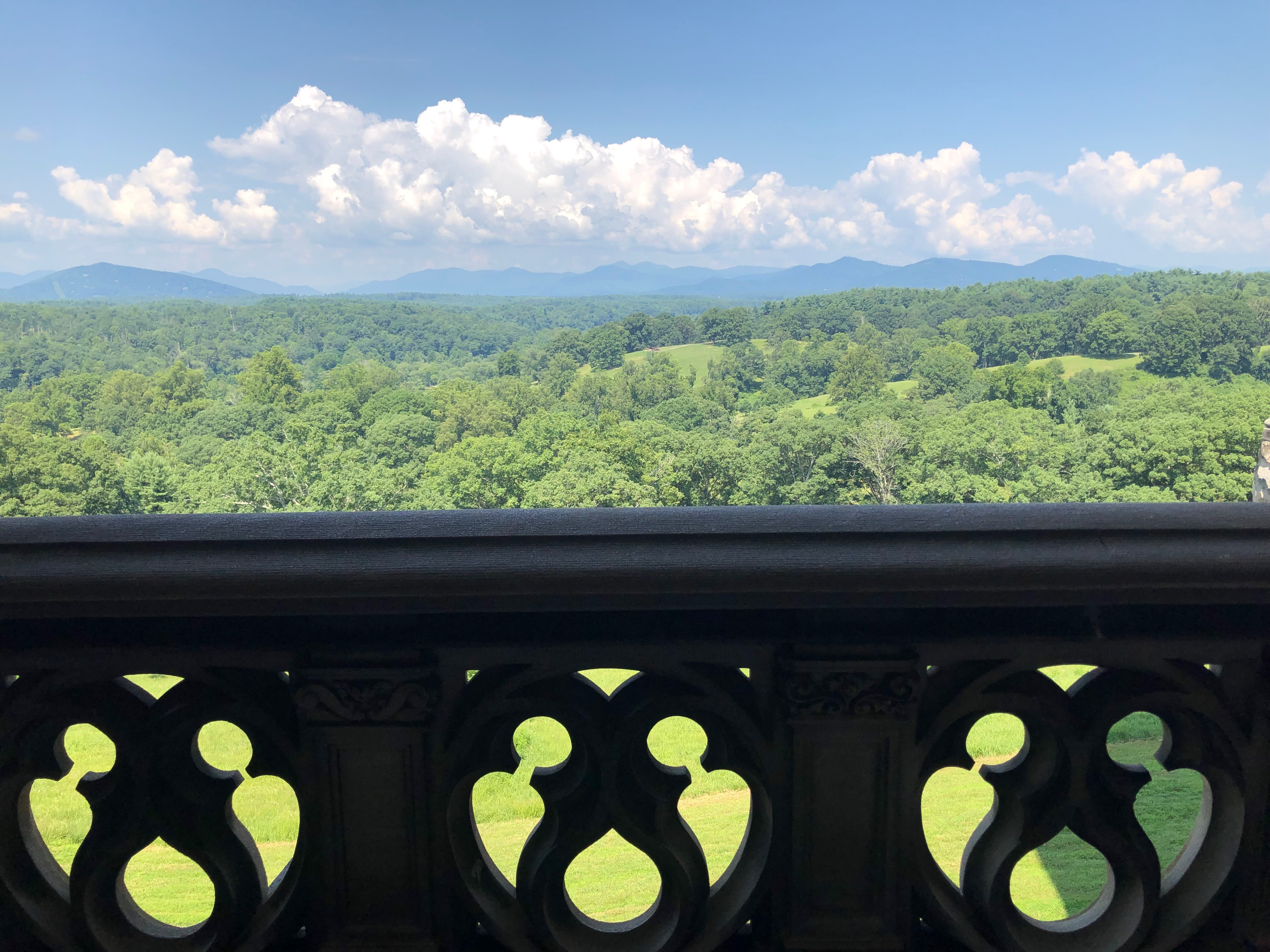 View from the Biltmore