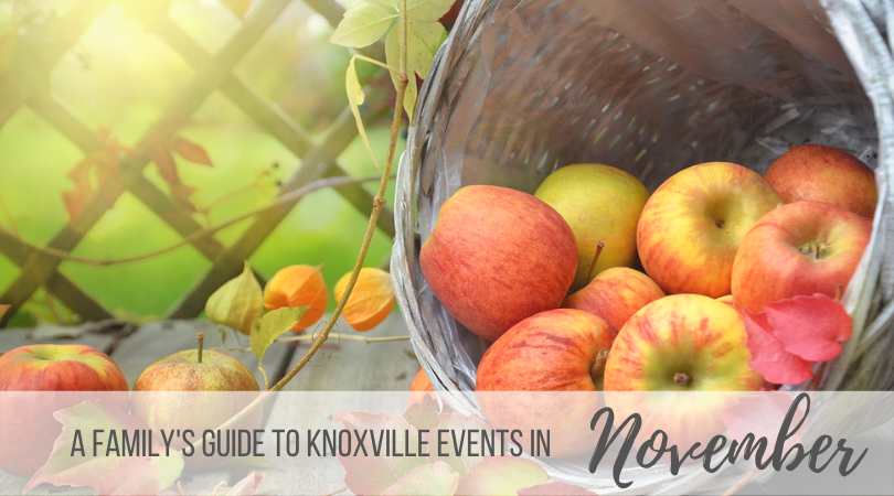 Knoxville Family Events in November