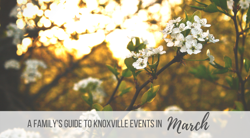 Knoxville Family March Events