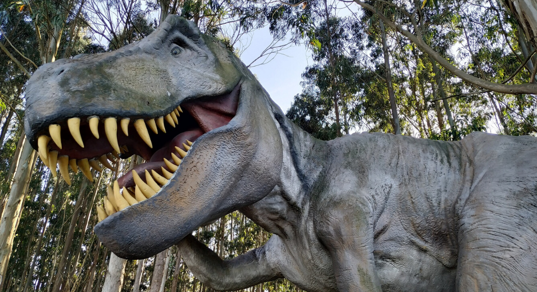 Teenasaurus Rex: How to Identify and Coexist with One