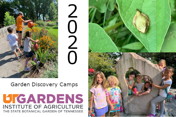 UT Gardens 2020 Summer Camps
