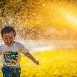 60 Knoxville Summer Activity Ideas