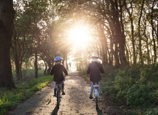 Best Knoxville Family-Friendly Bicycle Rides