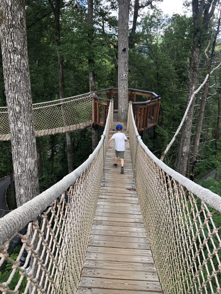 Treetop Skywalk