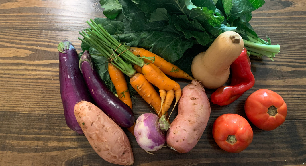 How a CSA Made My 2020 More Colorful