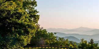 Family-Friendly Guide to Asheville, North Carolina