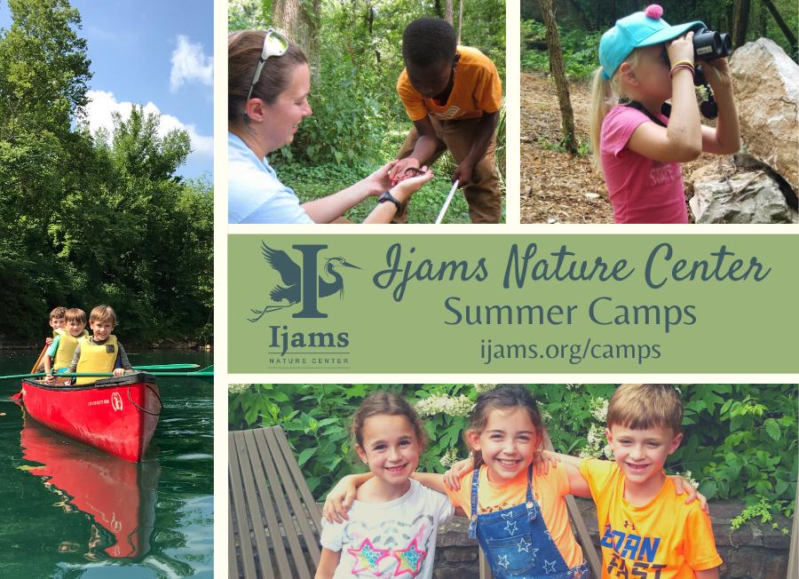 Ijams Nature Center Summer Camps