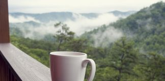 Winter Day Trips from Knoxville