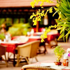 45+ Best Knoxville Patios