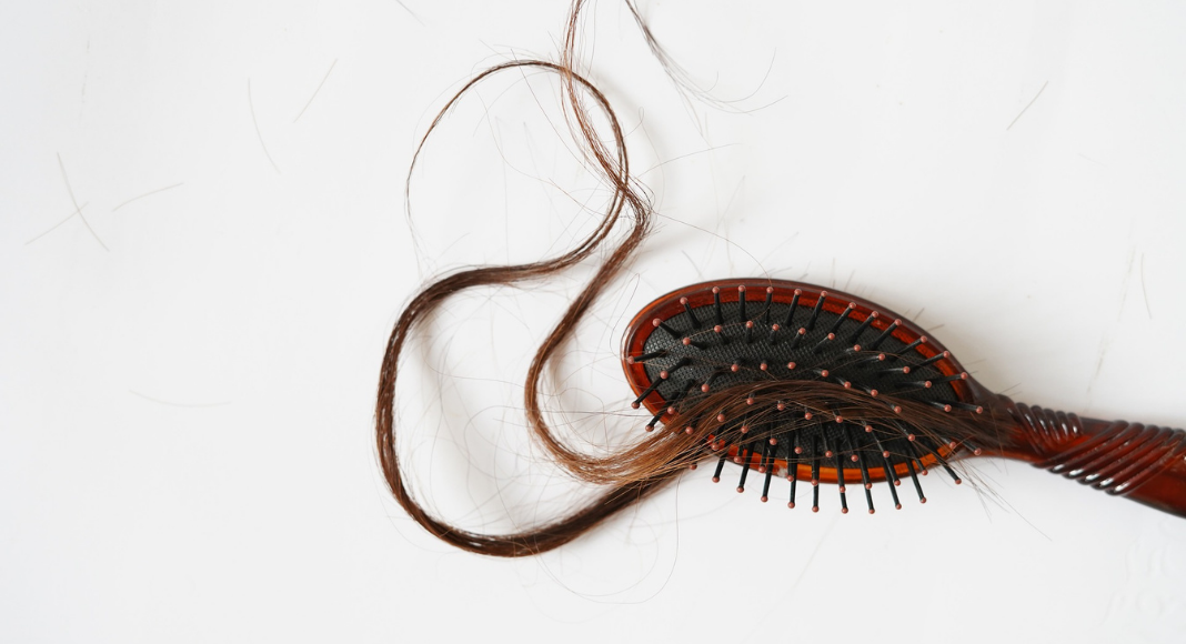 The Truth About Lice