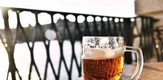 Best Breweries in Knoxville & Beyond