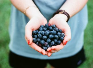 Where to Pick Blueberres in East Tennessee